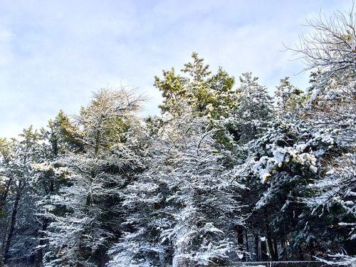 2014 12 Christmas - 136